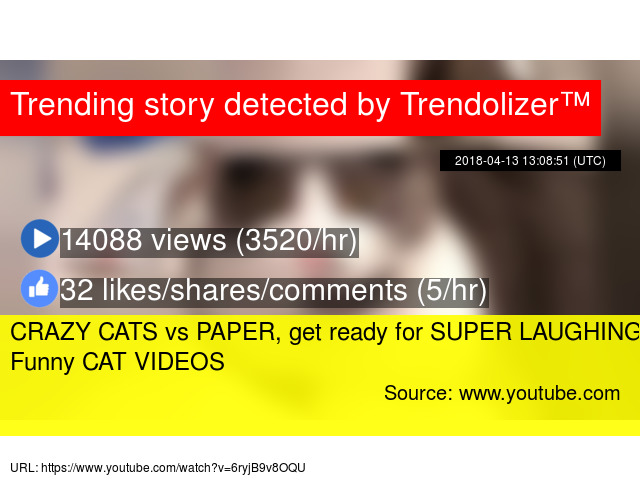 Image of: Laugh Fail Trendolizer Crazy Cats Vs Paper Get Ready For Super Laughing Funny Cat Videos