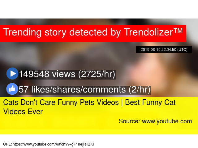 Image of: Cute Cats Hayquanet Cats Dont Care Funny Pets Videos Best Funny Cat Videos Ever