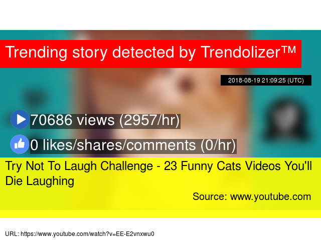 Image of: Animal Fail Trendolizer Try Not To Laugh Challenge 23 Funny Cats Videos Youll Die Laughing