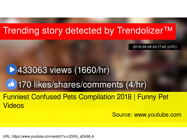 Image of: Compilations Lau Trendolizer Funniest Confused Pets Compilation 2018 Funny Pet Videos